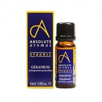 Absoluuttinen aromit - Geranium Egyptin öljy 10ml