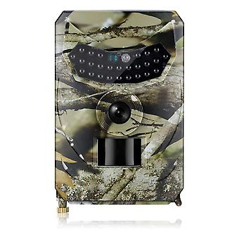Video notturno hunting camera photo trap wildlife trail