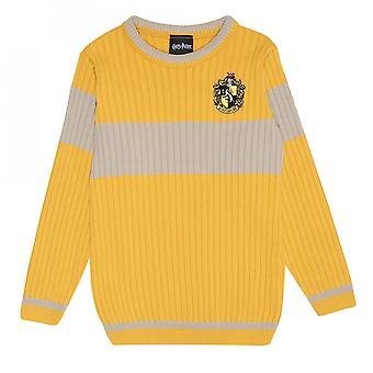 Harry Potter Boys Quidditch Hufflepuff Knitted Jumper