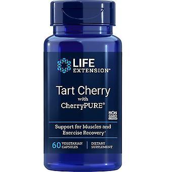 Cereja torta de extensão de vida com CherryPure Vegicaps 60