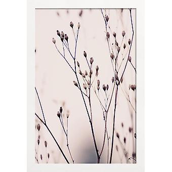 JUNIQE Print - Pastel z dzikiego kwiatu 3A Beżowy - Plakat kwiatowy w kolorze brązowym & kremowym białym