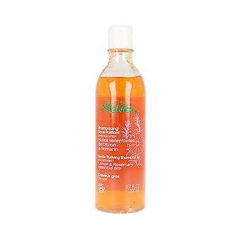 Shampoo Huiles Essentielles Melvita (200 ml)