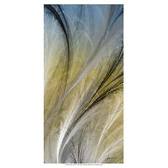 Fountain Grass IV Poster Print by James Burghardt (13 x 19)