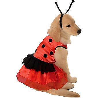 Marienkäfer Tier Kostüm