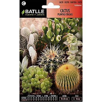 Batlle Cactus & Succulents (Garden , Gardening , Seeds)