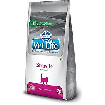 Farmina 獣医生命ストラバイト猫 (猫、猫食品、乾燥食品)