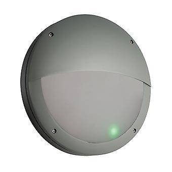 Saxby belysning Luik mikrovågsugn Sensor ögonlocket EM IP65 nödljus i grå