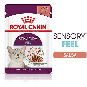 Royal Canin Sensory Feel Moist Cat Food in Sauce for Adult Cats