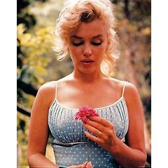 Marilyn Monroe Flower Poster Poster Print