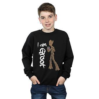 Marvel Boys Avengers Infinity War Graffiti Groot Sweatshirt