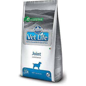 Farmina Vet Life Dog Joint (Chiens , Nourriture , Croquettes , Régime vétérinaire)