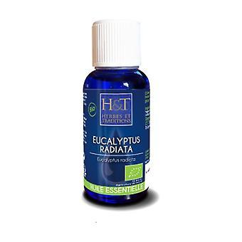 Eucalyptus radiata essential oil 30 ml of essential oil