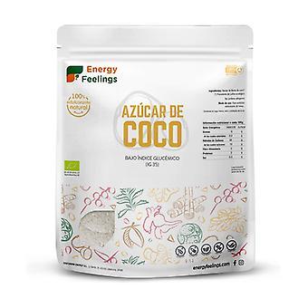 Coconut Sugar Eco XL Pack 500 g of powder