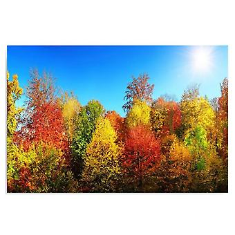 Deco Panel, Autumn trees