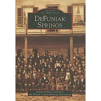 DeFuniak Springs by Diane Merkel - 9780738554075 Book