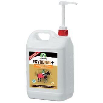 Audevard Ekyrenal Plus (Horses , Food , Food complements)