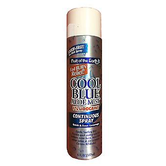 Fruit of the earth cool blue burn relief aloe spray, 6 oz