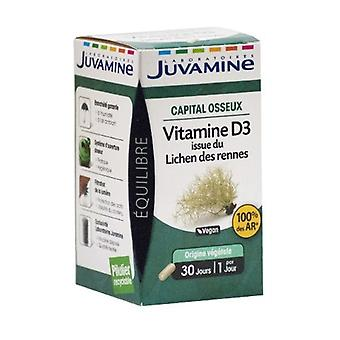 Vitamin D3 From Lichen of Rennes 30 vegetable capsules