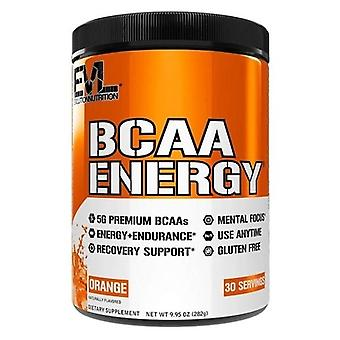 Evlution Nutrition BCAA Energia mela verde 291 gr