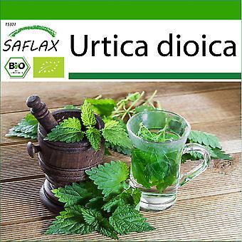 Saflax - 2000 Samen - Mit Erde - Bio - Brennel - BIO - Grande ortie - BIO - Ortica - Ecol'gico - Ortiga - BIO - Brennnessel