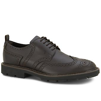Tod's mannen lace-up brogues in donker bruin leer