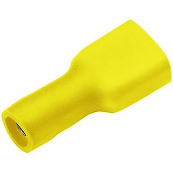 Cimco 180274 Blade receptacle Connector width: 6.3 mm Connector thickness: 0.8 mm 180 ° Insulated Yellow 1 pc(s)