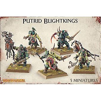 Games Workshop Warhammer Nurgle Rotbringers podre Blightkings