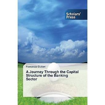 En resa genom av banksektorn av Giuliani Francesco kapitalstruktur