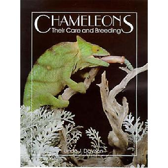 Chameleons - Their Care & Breeding by Linda J. Davison - 978088839