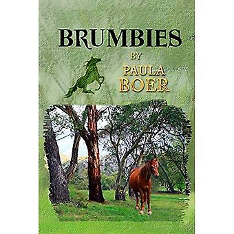 Brumbies (Brumbies)