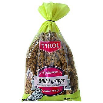Tyrol Millet Clusters (Birds , Bird Food)