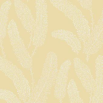Feather Branch Wallpaper Tree Leaves Plant White Yellow Vinyl Galerie