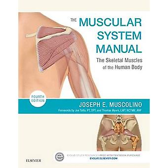 The Muscular System Manual - The Skeletal Muscles of the Human Body (4