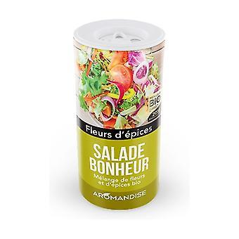 Onnellisuus Salaattijauhe 20 g jauhetta