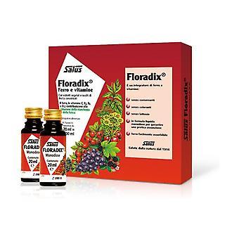 Floradix 10 units