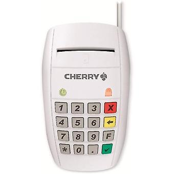 Smart Terminal ST-2100 Kartenleser, weiß