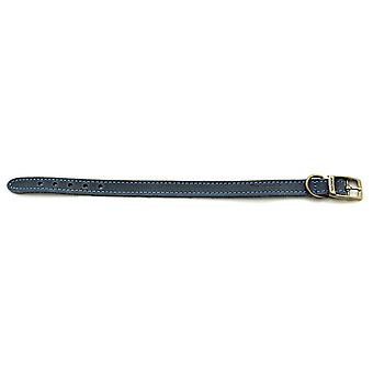 Pet leashes timberwolf leather collar blue 16mm x20-26cm