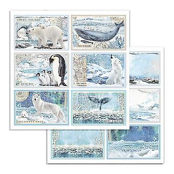 Stamperia Arctic Antarktis Kort 12x12 Tums Pappersark (10st) (SBB732)