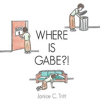 Where Is Gabe?! by Janice C Tritt - 9781545605349 Book
