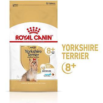 Royal Canin Yorkshire Terrier Voksen 8+ (Hunder , Hundemat , Tørr mat)