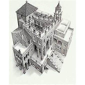 Ascendentes y descendentes de MC Escher Poster Poster Print