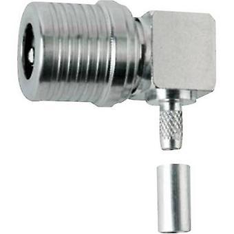 Connettore QLS spina, angolo retto 50 Ω Telegärtner J01420A0115 1/PC