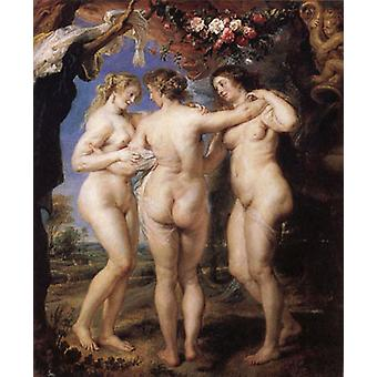 Las Tbree Graces, Peter Paul Rubens, 50x60cm