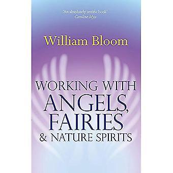 Werken met engelen, Fairies & natuur geesten