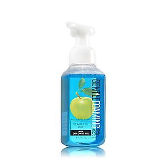 Bath & Body Works Beautiful Day Gentle Foaming Hand Soap 8.75 oz / 259 ml ( 2 Lot )