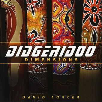 David Corter - Didgeridoo afmetingen [CD] USA import