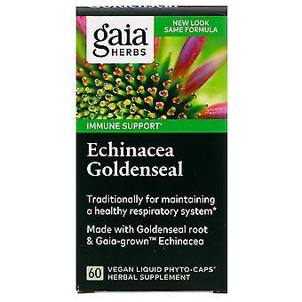 Gaia Kruiden, Echinacea Goldenseal, 60 Vegan Liquid Phyto-Caps