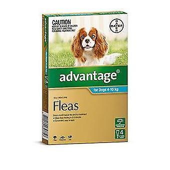 Het voordeel van Aqua 4 Pack Medium honden 4-10kg