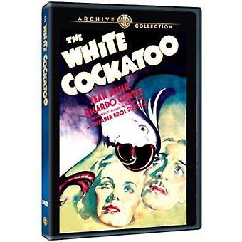 Cacatúa blanca (1935) [DVD] los E.e.u.u. la importación