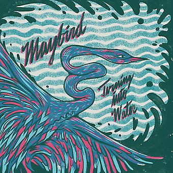 Maybird - at dreje i vand [Vinyl] USA import